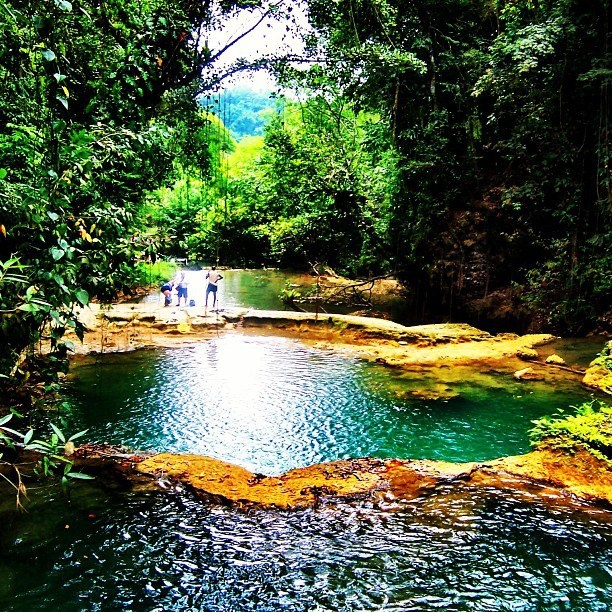 53 Best Beautiful Jamaica Images On Pinterest Jamaica Honeymoon Jamaica Vacation And Places