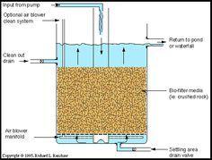 1000 ideas about pond filters on pinterest koi ponds for Koi pond sand filter