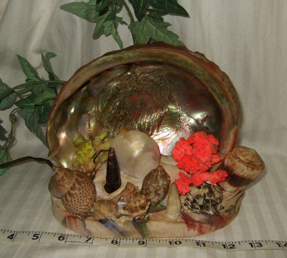 Lamp//Electric//Works 1930/'s Antique Abalone Sea Shell T.V