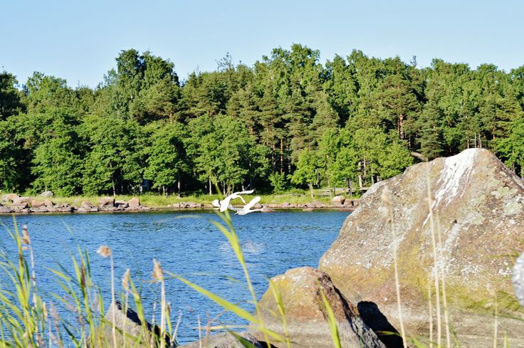 Midsummer 2013, Tiutinen, island