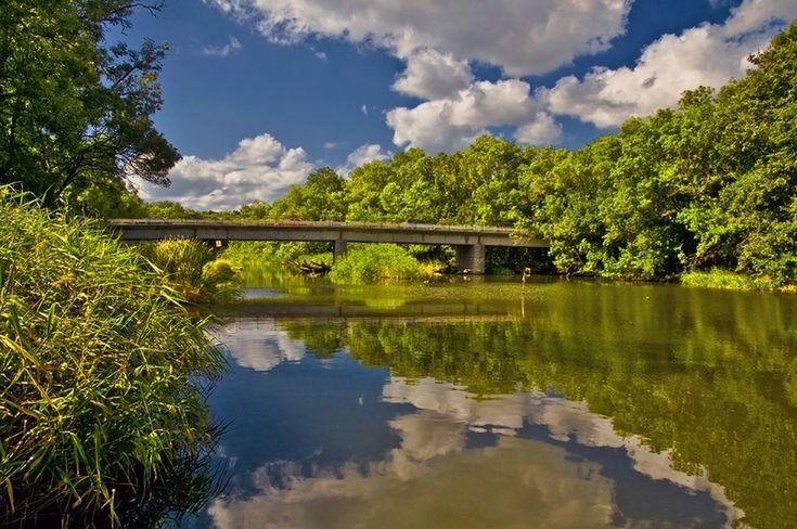 Ropotamo River - Primorsko, Bulgaria
