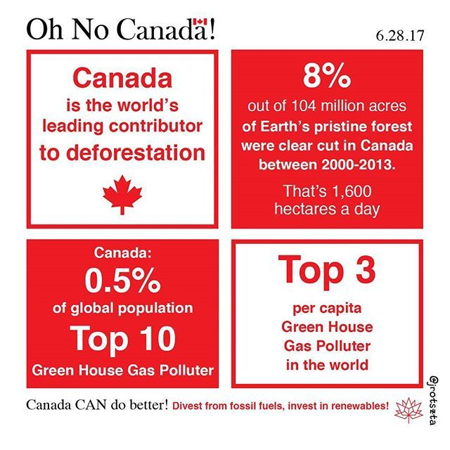 We need urgent, immediate, real action to combat environmental degratation and climate change. You can't eat money. Stats from Global Forest Watch and Climate Action Network via @goldilocks_dj http://www.huffingtonpost.ca/2014/09/05/canada-deforestation-worst-in-world_n_5773142.html . . #daily #diary #comics #infographic #canada #canada150 #poverty #canadaday #canadaart #art #drearydiary #canadaday