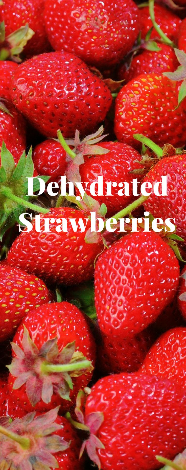 722b5472ab31bc37e20071b44e7ede1d dehydrated strawberries life hacks