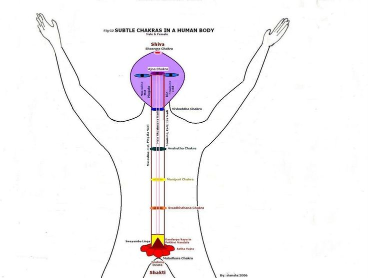 118 best images about chakras on pinterest
