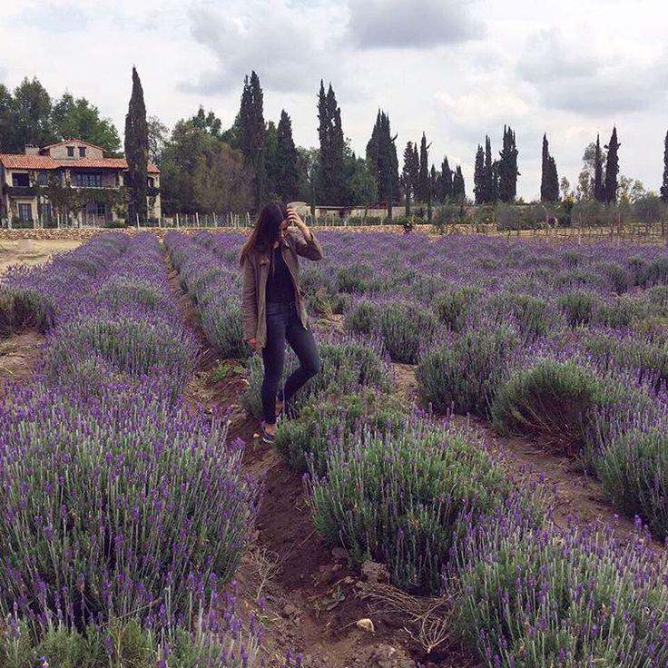 Photos and videos taken at 'La Santisima Trinidad' on Instagram