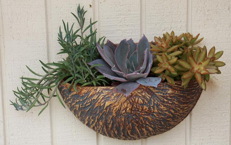 Bamboo Oxide Wall Planter   Ceramic wall planters ...