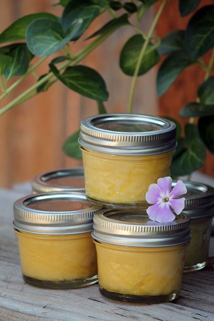 Camp Wander: Coconut Oil Skin Polish + Essential Oil Blends