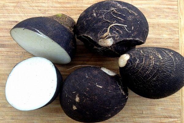 Méregteleníti a tested és a vesekövet is gyógyítja. Íme 3 aranyat érő fekete retek recept!