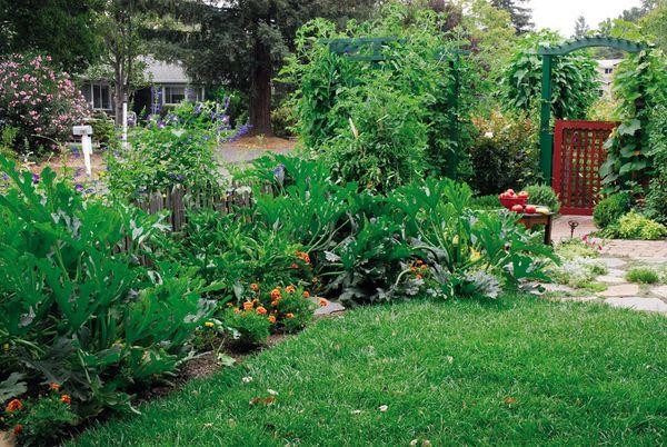 139 Best Gardening Images On Pinterest Vegetable Garden 640 x 480