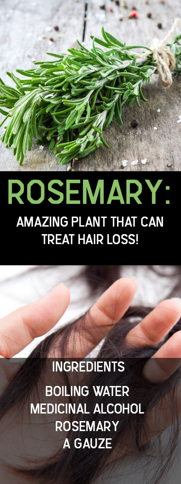 Rosemary is an herb you might not even know you have in your garden. It has many health benefits and has been used by the ancient Greeks and Romans for its medicinal properties. Rosemary is excellent for regulating your blood pressure and for treating digestive problems, but it has also been used against heart diseaseContinue Reading