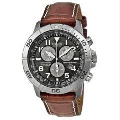 Citizen Eco-Drive Perpetual