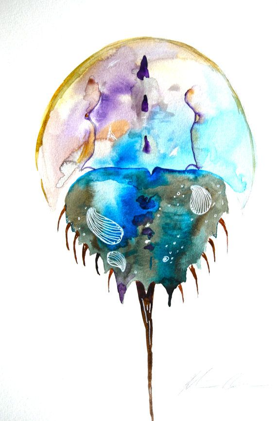 "Watercolor Painting, Original Art, Horseshoe Crab, 11""x15, Animal Art, Sea Shore"
