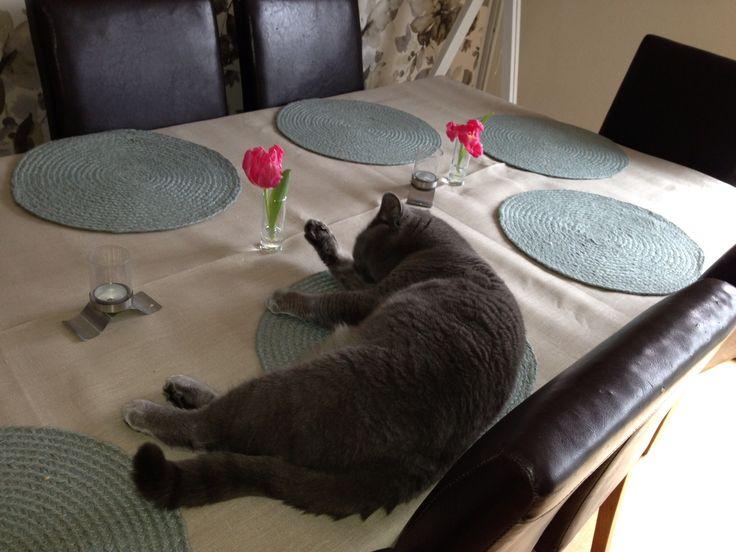 Det bästa man har lägger man på bordet