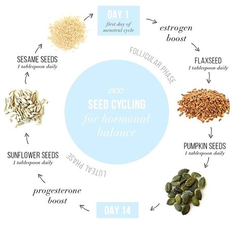 Did you know that eating various seeds during that time of the month can help ba…