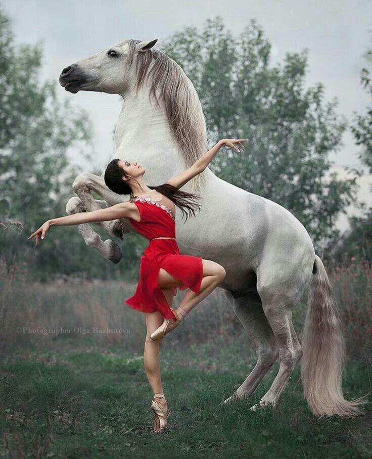 недвижимость картинки конь танцует стригущий лишай