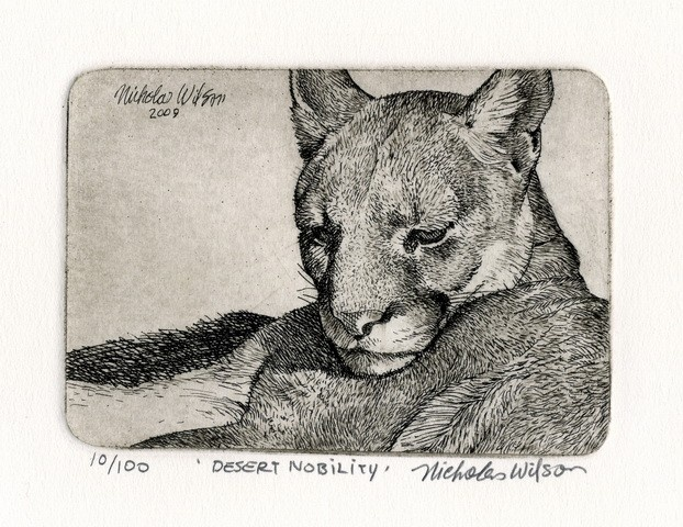 Line Drawing Of Desert Animals : 18 best nicholas wilson images on pinterest etchings printmaking