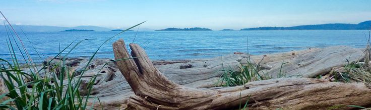 'You are not a drop in the ocean. You are the entire ocean in a drop.' - Rumi  Rathtrevor Beach #SalishSea