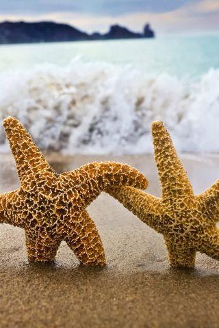 Starfish Stroll :)