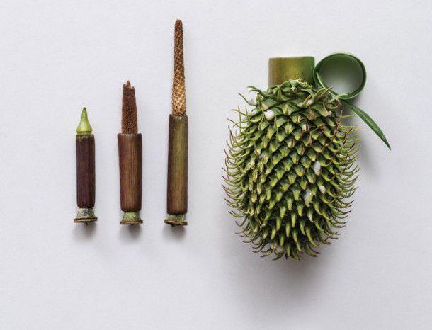 gedroogde-planten-kunst-Sonia-Rentsch-3