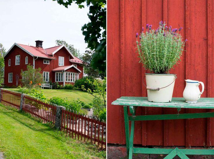 Utmed den slingrande byvägen i Enånger bor Sofia och Mats Erik i ett falurött gammalt hus. Här har de anlagt sin trädgård med läkande örter