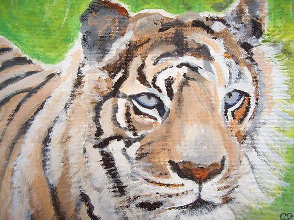 Tiger acrylic