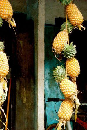 tropical wedding - brides of adelaide magazine - pineapple decor