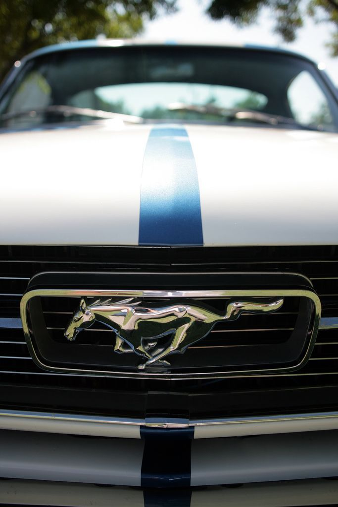 Mustang with racing stripes