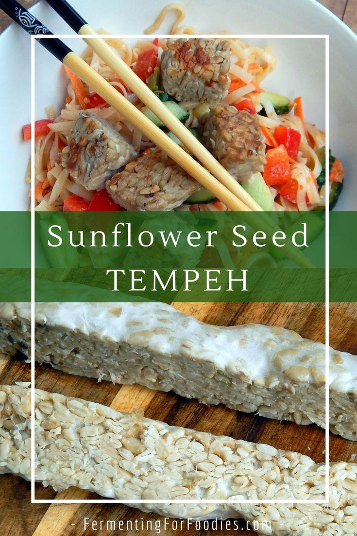 Sunflower Seed Tempeh Fermenting For Foodies Recipe Tempeh Soy Free Vegan Fermented Veggies