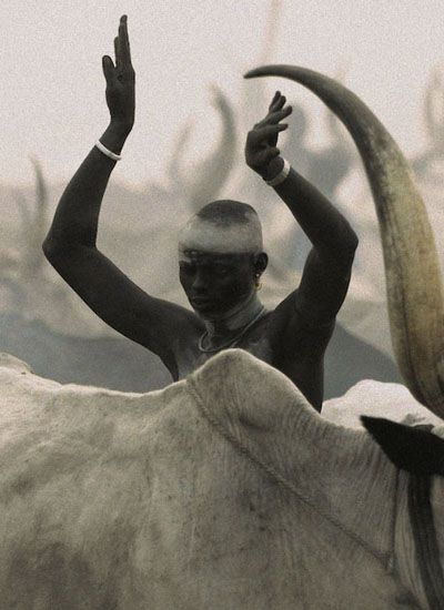 South Sudan. Dinka people and cattle // Angela Fisher & Carol Beckwith