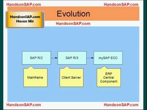 Introduction To Sap R 3 And Mysap Ecc Erp Training And Development Sap Introduction