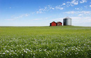 Manitoba Canada= Beautiful farm land
