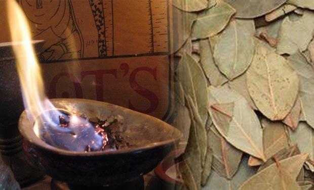 Según una investigación desarrollada por el científico ruso Gennady Malakhov la planta de laurel produce efectos sorprendentes en cuanto disminuir el estrés y la fatiga. Si sufres de estrés, fatiga crónica, nervios o tensión constante, prueba quemar esta hoja y te relajarás al instante!