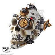 Alchemy Gothic Vault Erasmus Darwin's Steam Cerebrum Steampunk Skull Decor