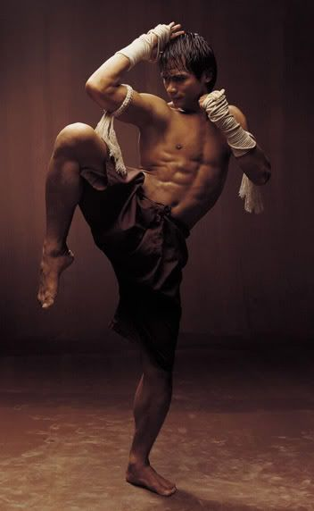 "Muay Thai is referred to as the ""Art of Eight Limbs"".  Here's action star Tony Jaa."