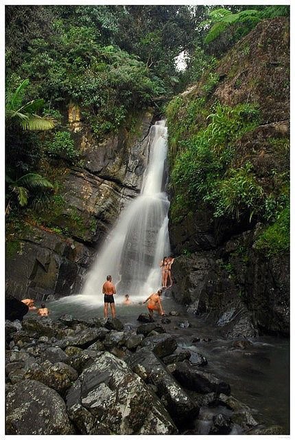 I will definitely be swimming here!!!  La Mina waterfall, El Yunque rain forest, Sierra Luquillo, Puerto Rico