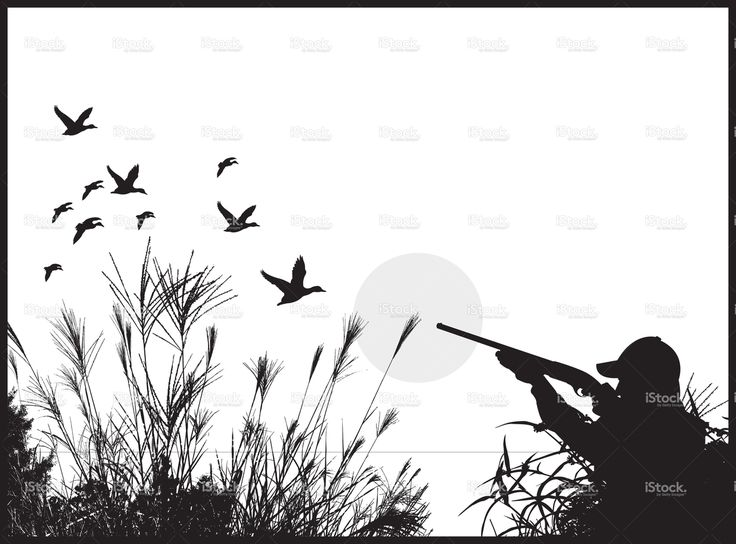 Duck Hunter - Hunting Background