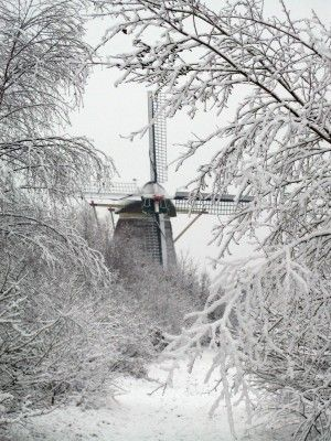 Winter in Holland...