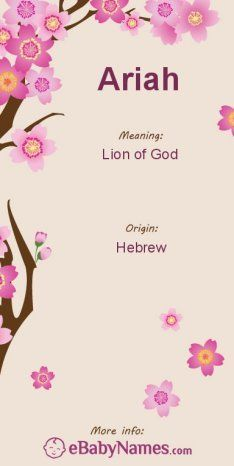 "Meaning of Ariah: Ariah is a masculine Hebrew name that is derived from ari meaning ""lion"" and ah meaning ""of God"