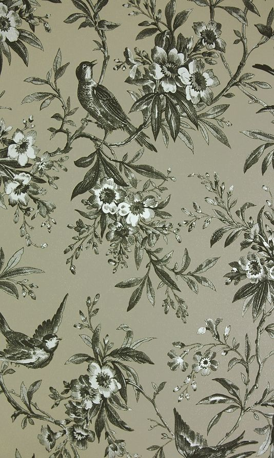 Chelsea Morning Toile Wallpaper A toile wallpaper featuring birds amongst flowering branches in black on taupe.