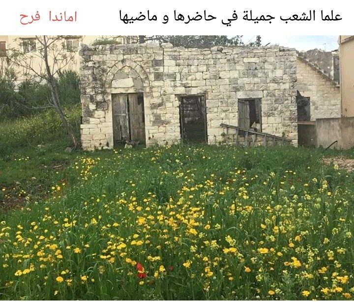 من بيوت علما الشعب Old Houses South Lebanon