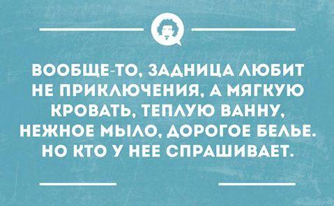 12814721_686350654801365_8942532191364066634_n.jpg (479×296)