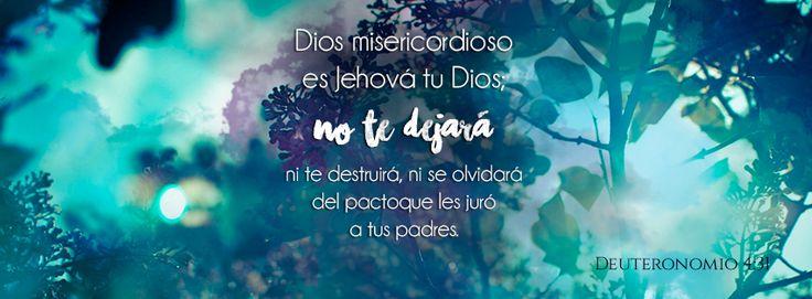 """No te dejará - Deuteronomio 4:31 """"porque Dios misericordioso es Jehová tu Dios; no te dejará, ni te destruirá, ni se olvidará del pacto que les juró a tus padres."""""""