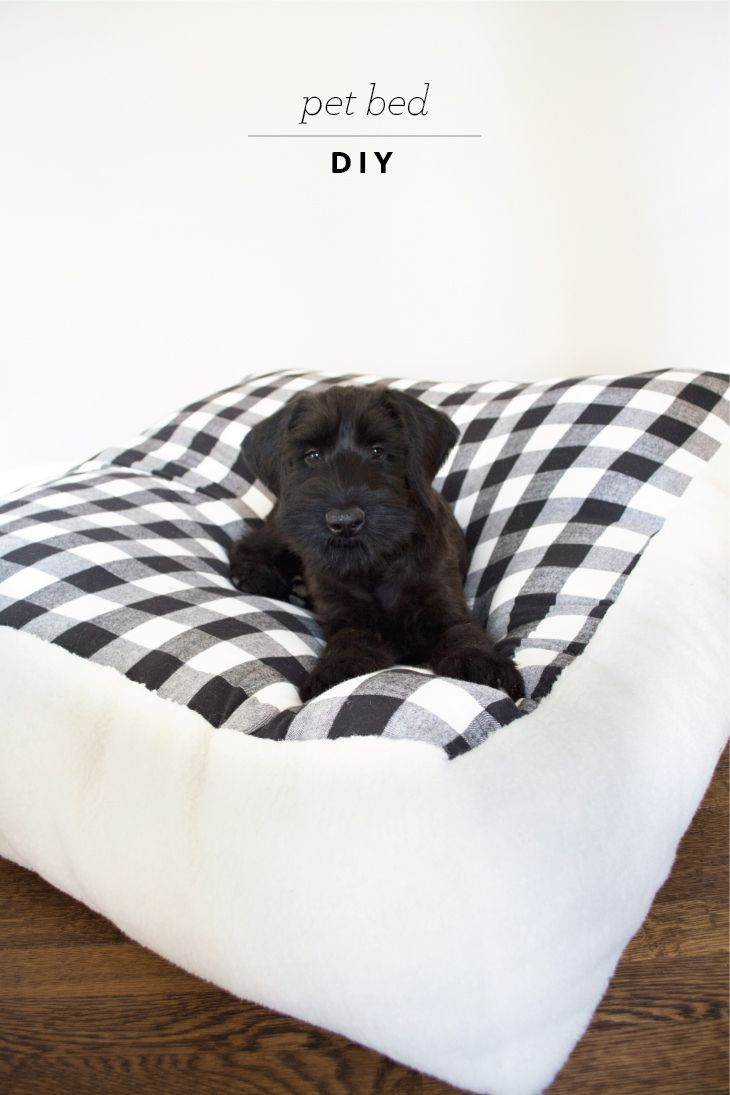DIY Pet Bed and Finn the adorable giant schnauzer