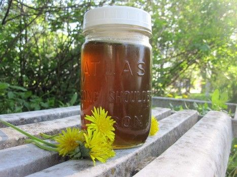 Dandelion syrup - sunshine in a jar! Could easily be dandilion tea too (just without loads of sugar!)