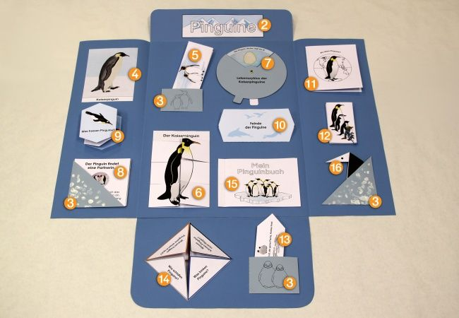 123 besten lapbooks bilder auf pinterest unterricht ideen schulsachen und unterrichtsmaterialien - Pinguin basteln vorlage ...