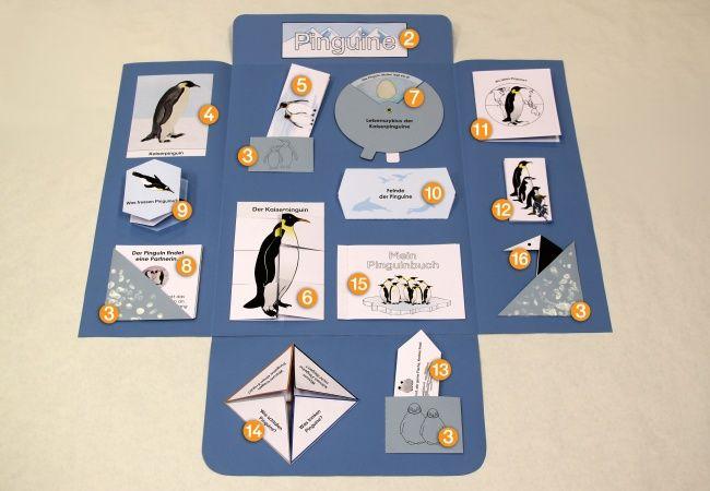 pinguin lapbook innen kigaportal kindergarten lernen pinterest pinguine schule. Black Bedroom Furniture Sets. Home Design Ideas
