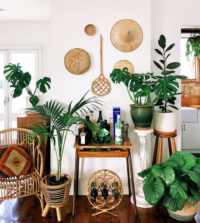 Erstaunlich HOME & GARDEN: Une ancienne usine reconvertie par un amoureux des plantes