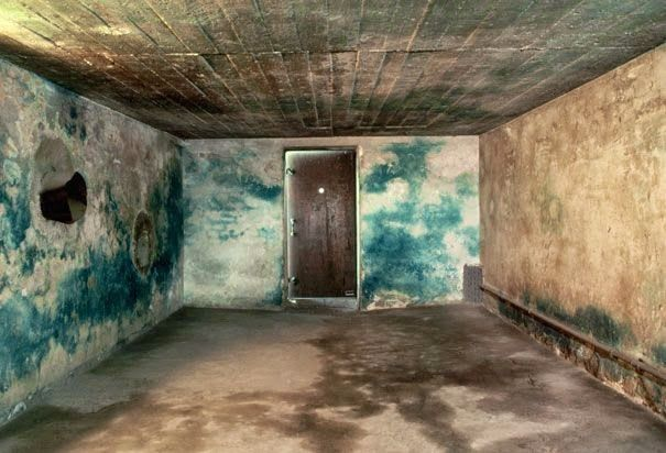 The walls were stained blue by Zyklon B, the poisonous gas used to murder the victims of the Final Solution. Needless to say perhaps, but it takes an awful lot of Zyklon B to stain walls like that