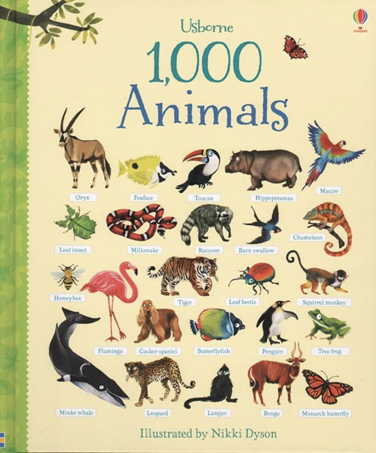 A delightful word book showing exactly one thousand animals, each individually named and lovingly illustrated. Every double page includes an array of animals to pore over, from dinosaurs to dogs. A wonderful book to share together, perfect for young animal lovers, and an excellent way for children to add lots of words to their spoken vocabulary.
