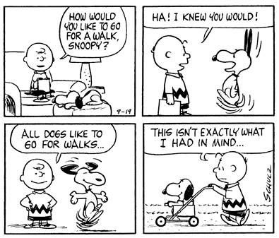 Charlie Brown and Snoopy go for a walk....sort of. ; )
